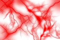「血管 site:http://www.8181118.com/」の画像検索結果