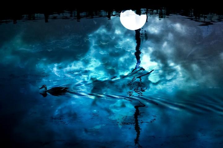 湖面の満月