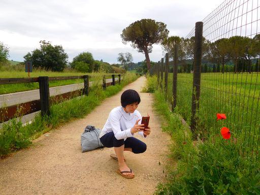 https://image.reservestock.jp/pictures/15092_ZDBkOGZhODUwNGMyO.JPG