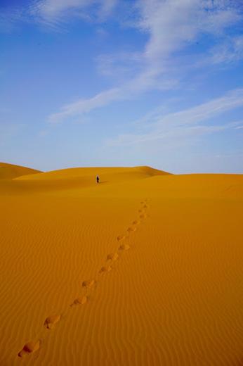 感動の砂漠体験