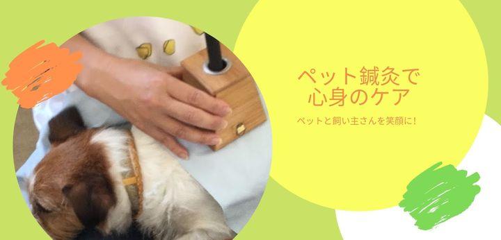 ペット鍼灸で心身のケア