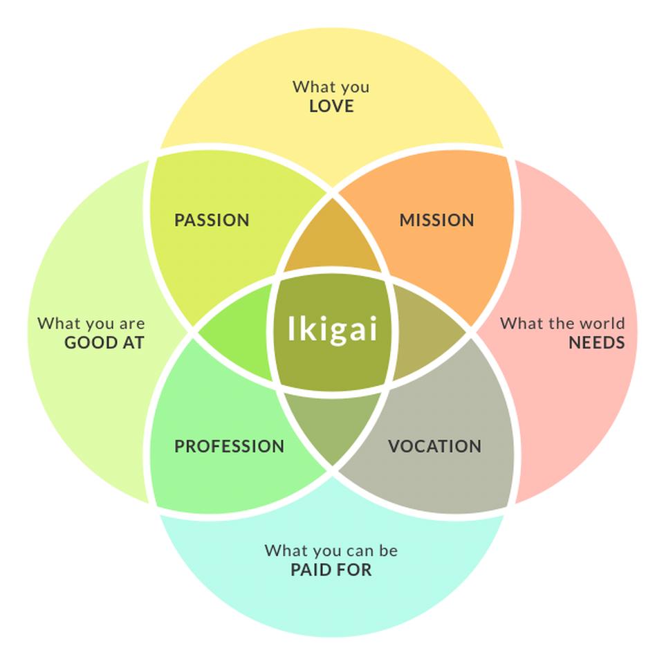 IKIGAIチャート図