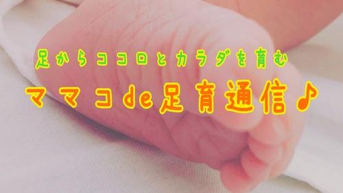 37573_zjdmmmjkzjk1njq4z